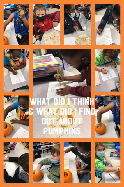 2nd Grade Pumpkin Prediction