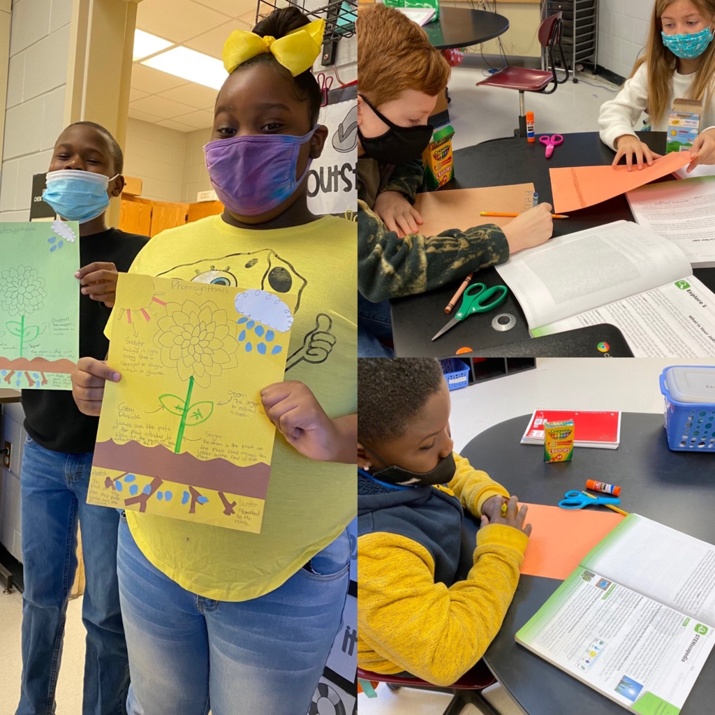 5th graders create anchor charts for Photosynthesis