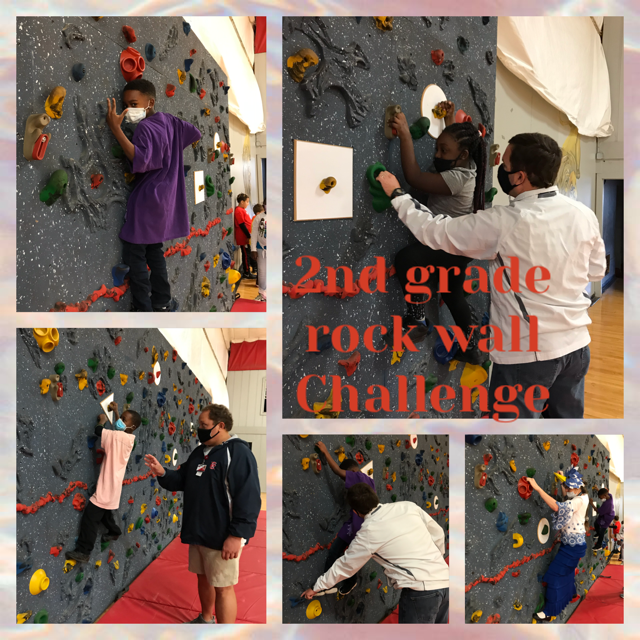 2nd Grade climbing the rock wall.