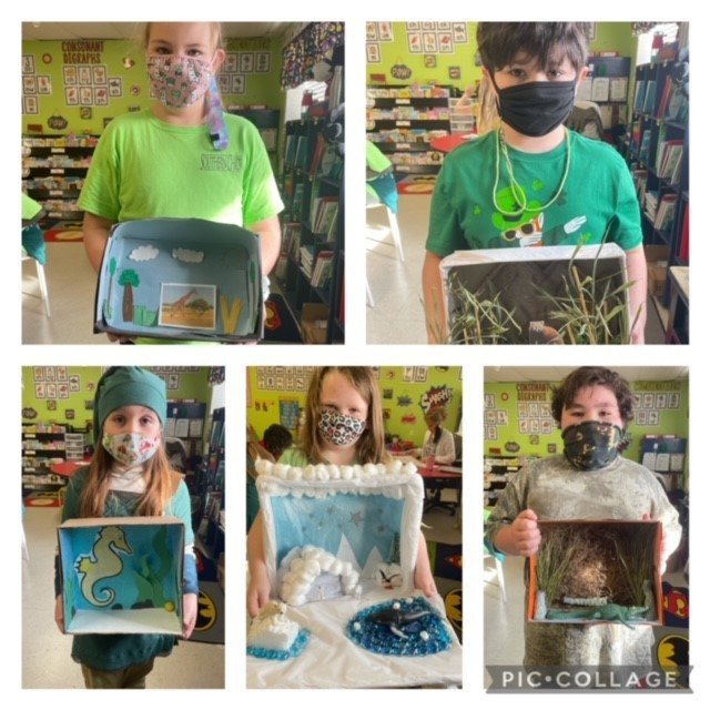 Animal Habitat projects