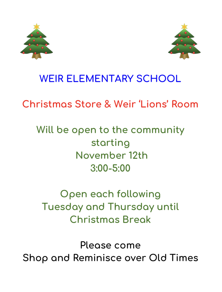 Information on WES Christmas store
